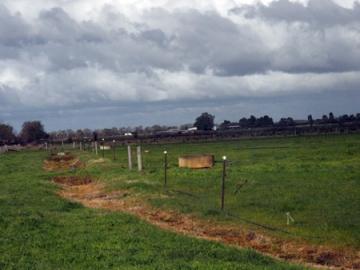 Dairy paddocks in Victoria, Australia